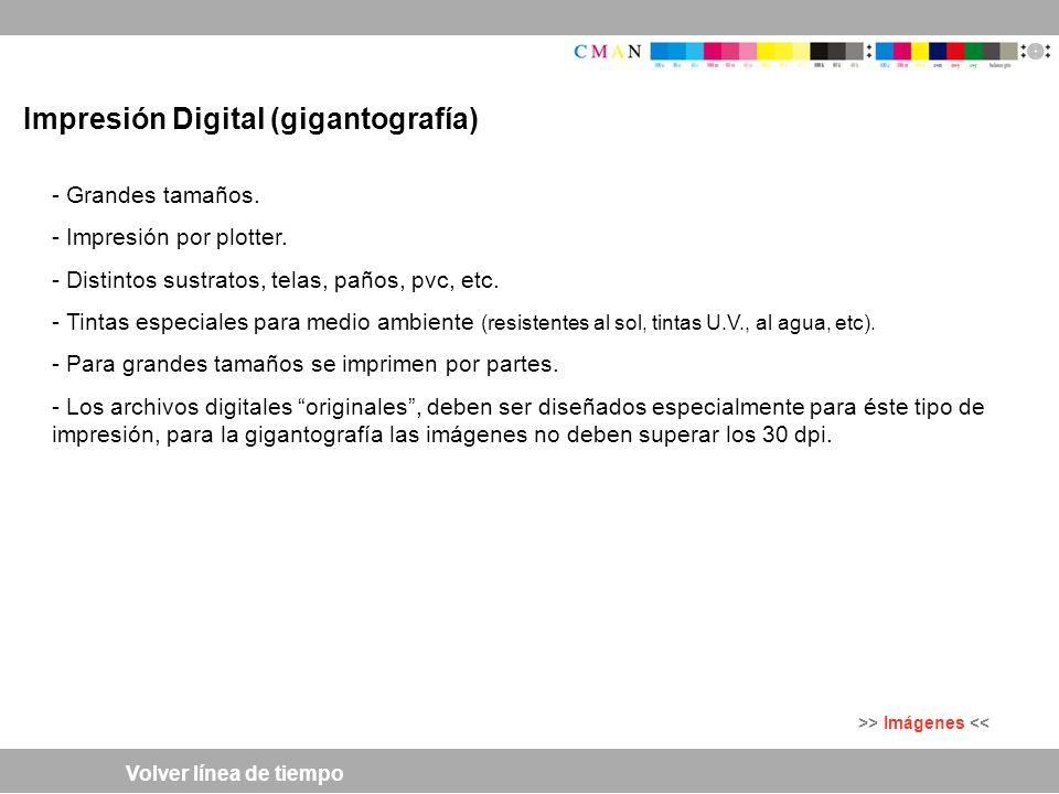 Impresión Digital (gigantografía)