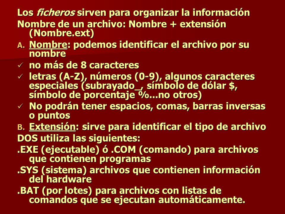 Los ficheros sirven para organizar la información