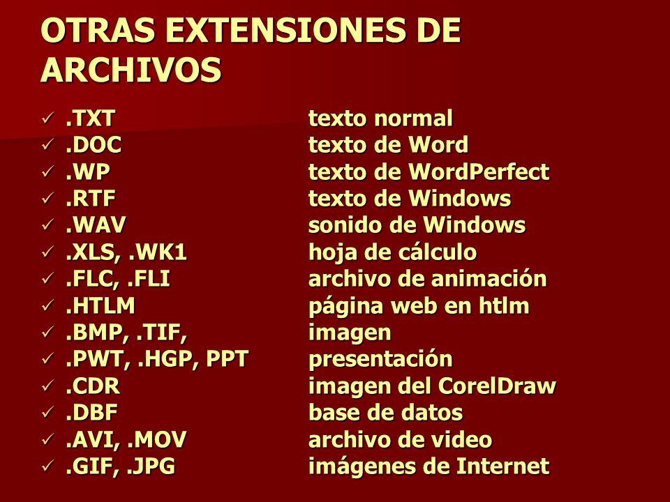 OTRAS EXTENSIONES DE ARCHIVOS
