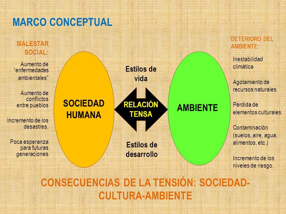 CONSECUENCIAS DE LA TENSIÓN: SOCIEDAD-CULTURA-AMBIENTE