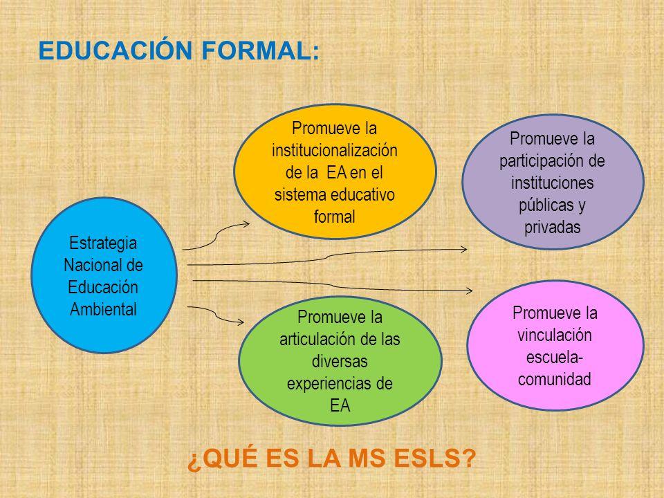 EDUCACIÓN FORMAL: ¿QUÉ ES LA MS ESLS