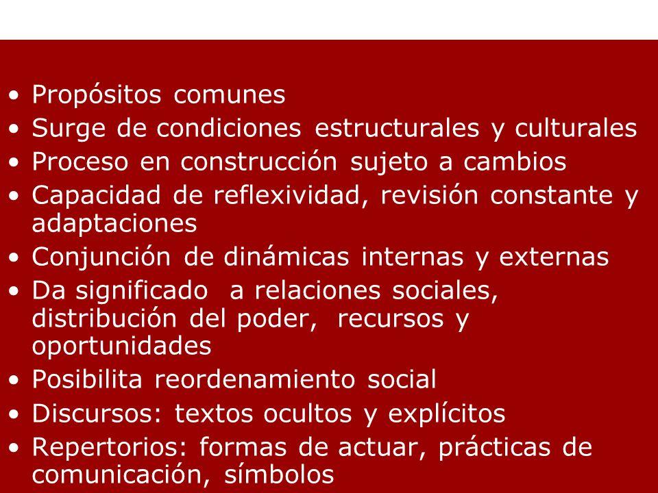 Propósitos comunes Surge de condiciones estructurales y culturales. Proceso en construcción sujeto a cambios.