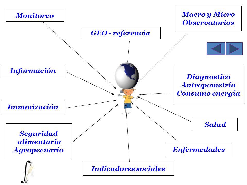 Macro y MicroObservatorios. Monitoreo. GEO - referencia. Información. Diagnostico. Antropometría. Consumo energía.