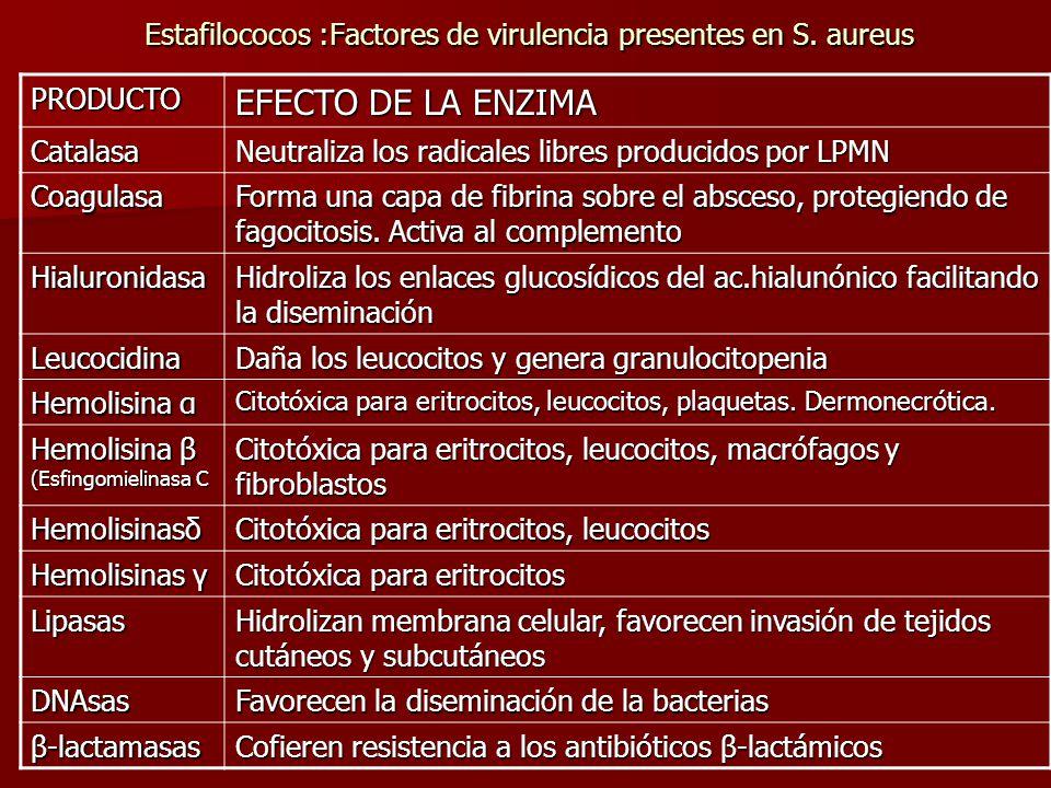 Estafilococos :Factores de virulencia presentes en S. aureus