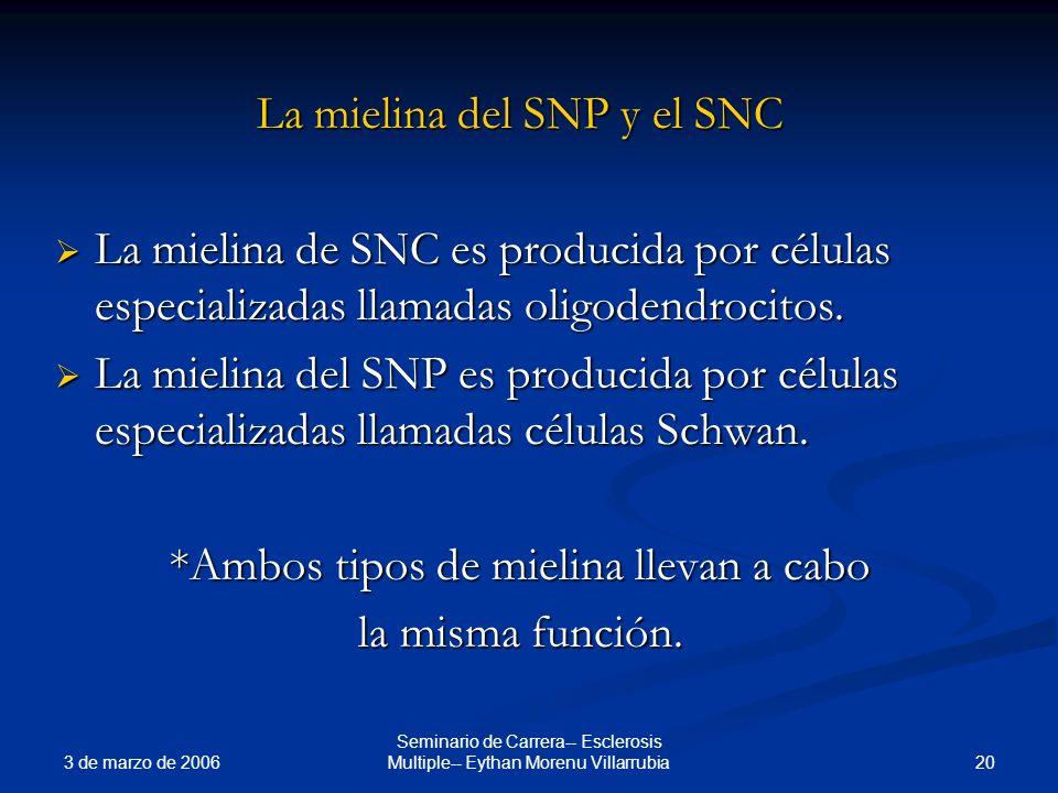 La mielina del SNP y el SNC