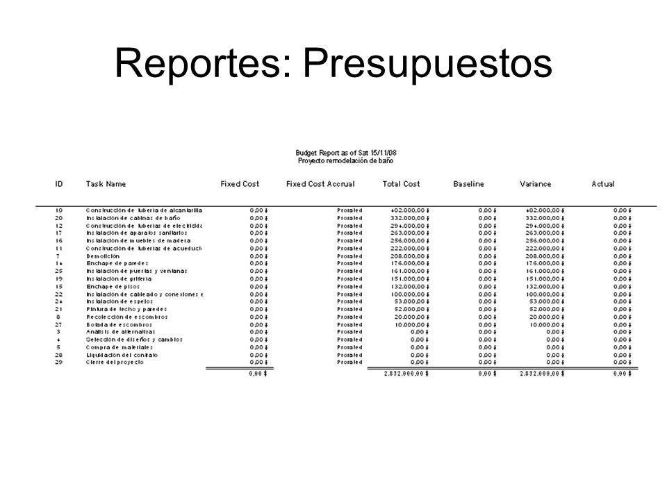 Reportes: Presupuestos