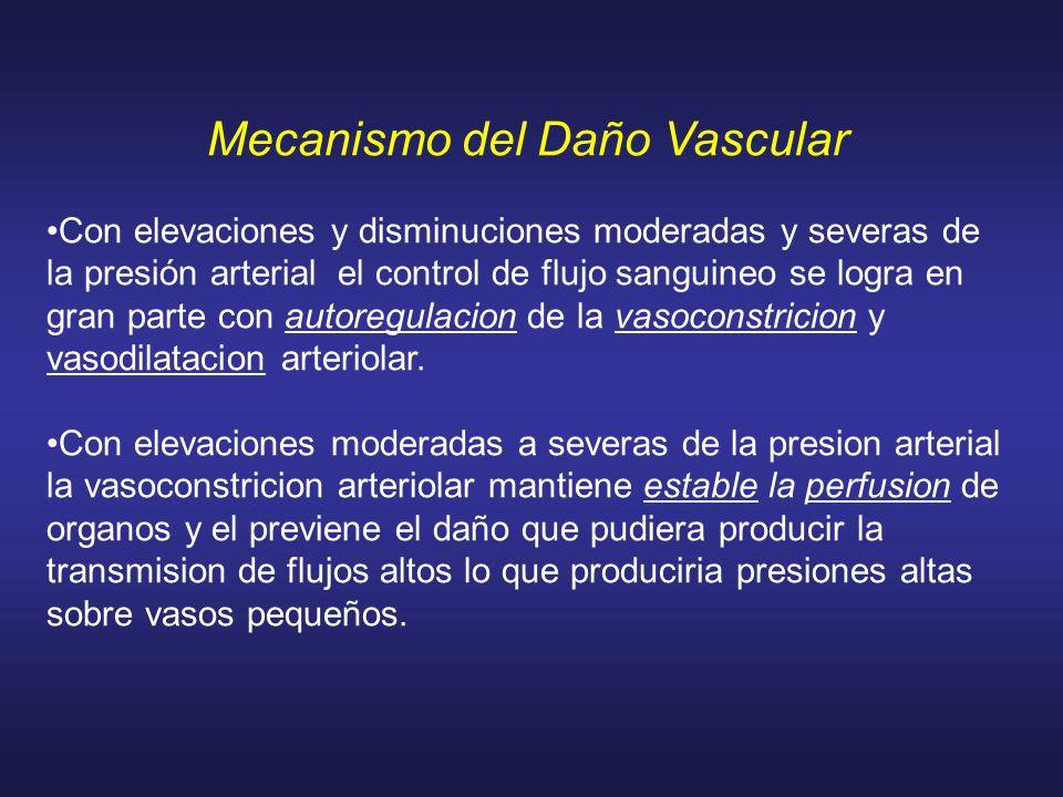 Mecanismo del Daño Vascular