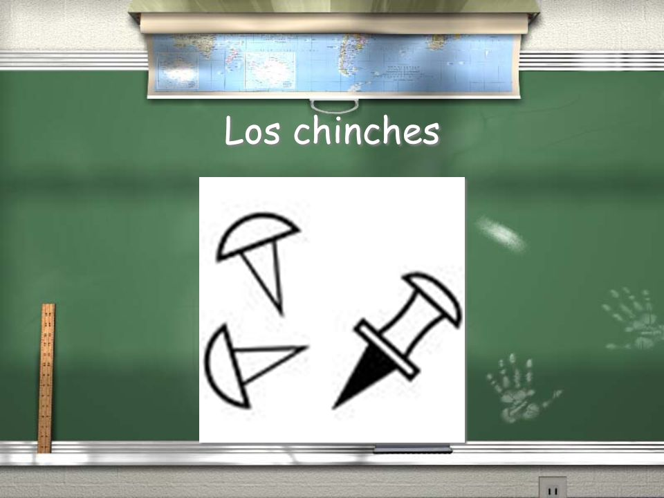 Los chinches