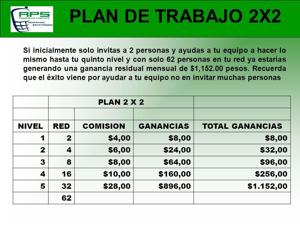 PLAN DE TRABAJO 2X2