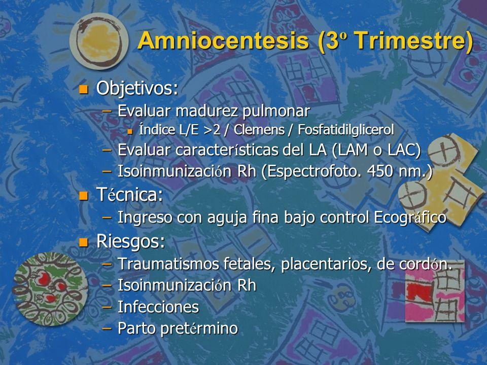 Amniocentesis (3º Trimestre)