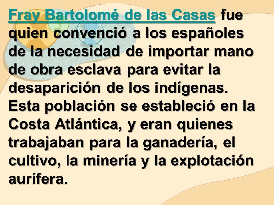 Fray Bartolomé de las Casas fue quien convenció a los españoles de la necesidad de importar mano de obra esclava para evitar la desaparición de los indígenas.