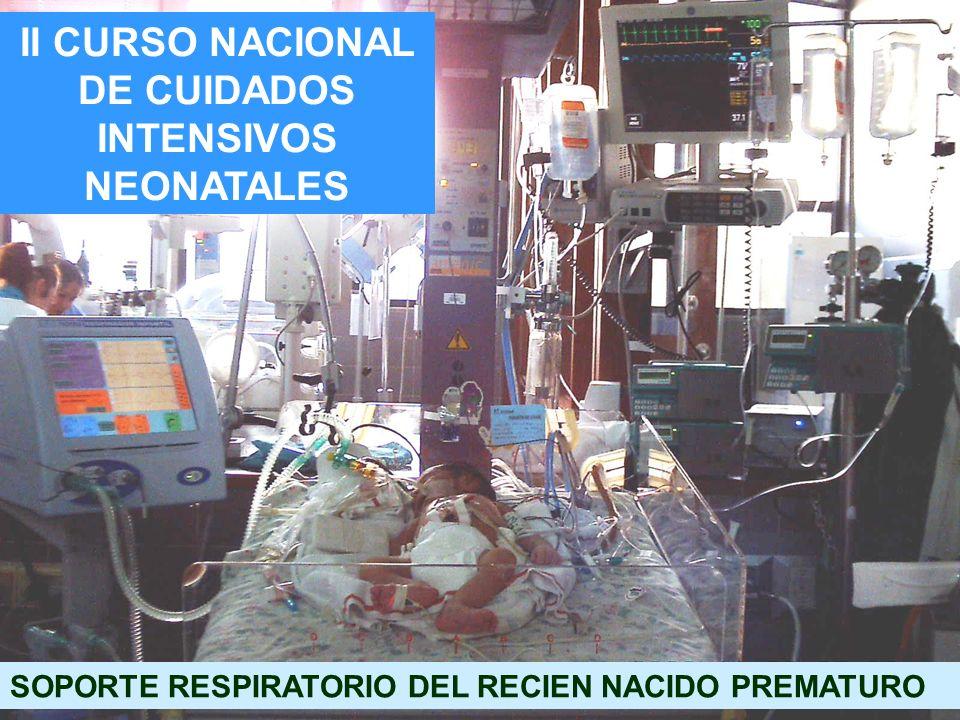 II CURSO NACIONAL DE CUIDADOS INTENSIVOS NEONATALES