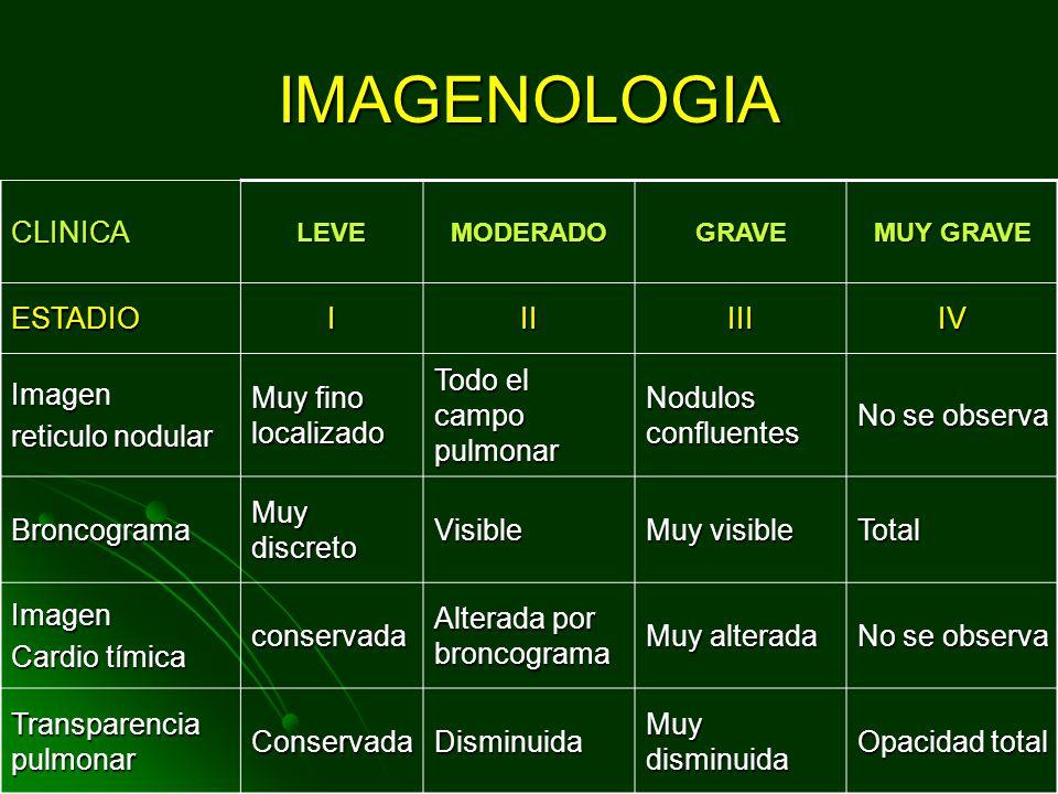 IMAGENOLOGIA CLINICA ESTADIO I II III IV Imagen reticulo nodular