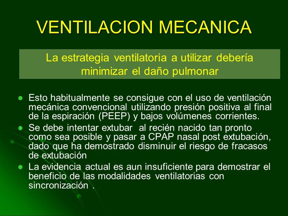 VENTILACION MECANICA La estrategia ventilatoria a utilizar debería minimizar el daño pulmonar.