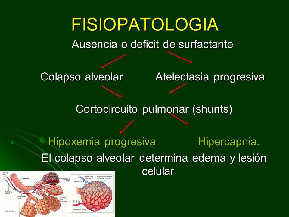 FISIOPATOLOGIA Ausencia o deficit de surfactante