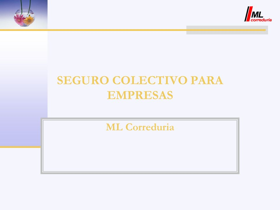 SEGURO COLECTIVO PARA EMPRESAS
