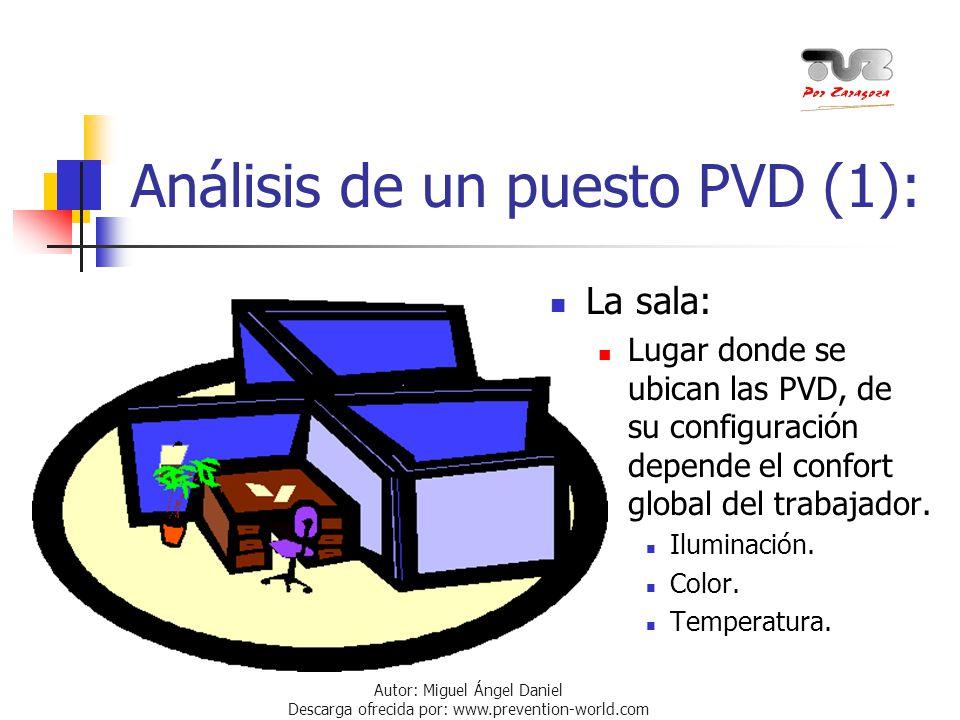 Análisis de un puesto PVD (1):