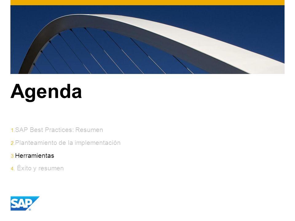 Agenda SAP Best Practices: Resumen Planteamiento de la implementación