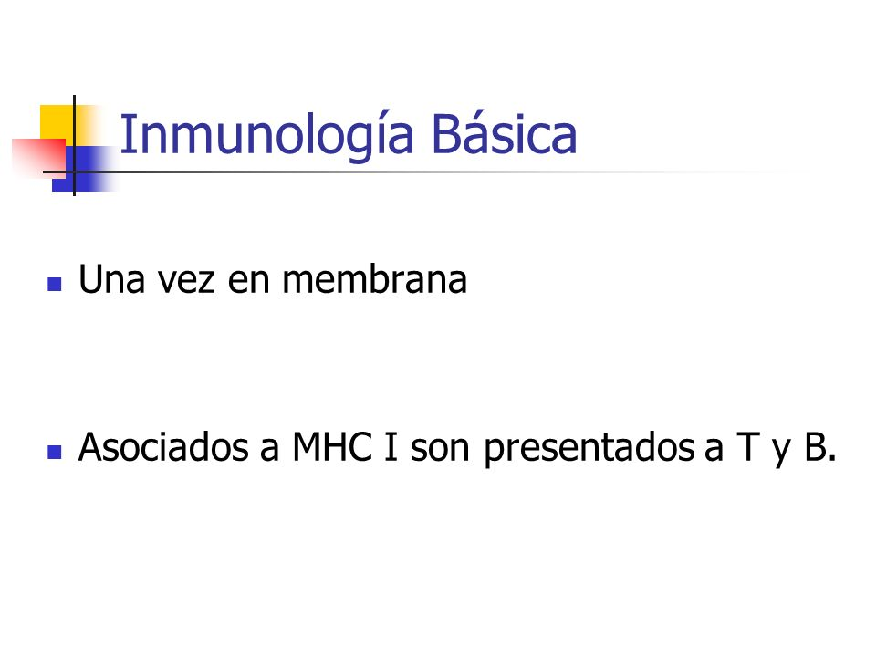 Inmunología Básica Una vez en membrana