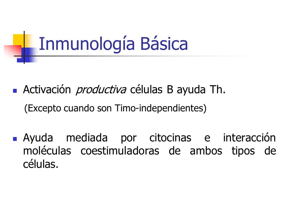 Inmunología Básica (Excepto cuando son Timo-independientes)