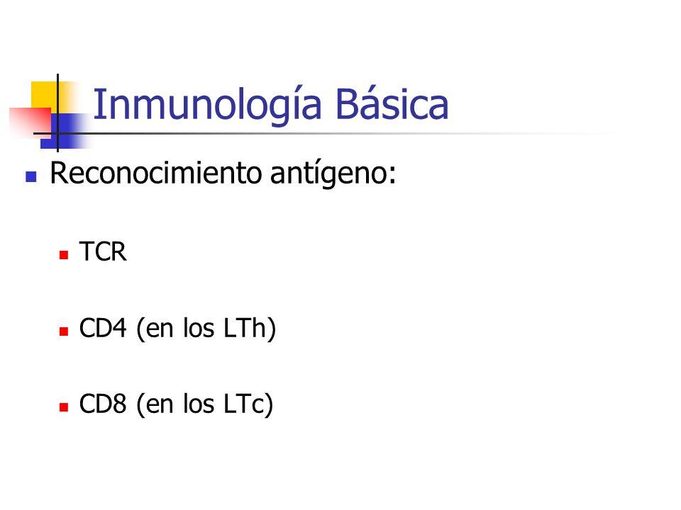 Inmunología Básica Reconocimiento antígeno: TCR CD4 (en los LTh)
