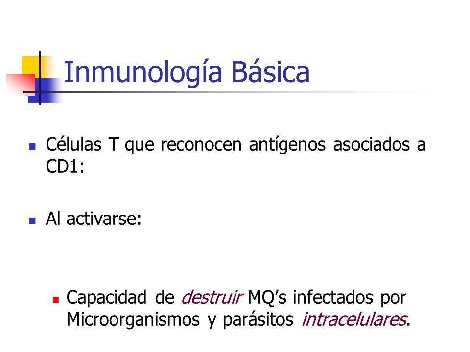 Inmunología Básica Células T que reconocen antígenos asociados a CD1: