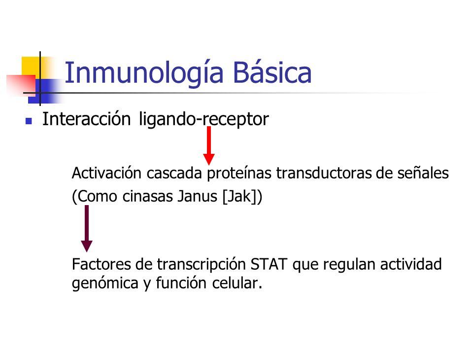 Inmunología Básica Interacción ligando-receptor