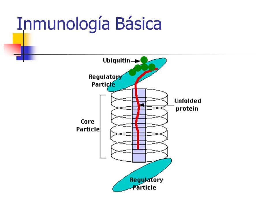 Inmunología Básica