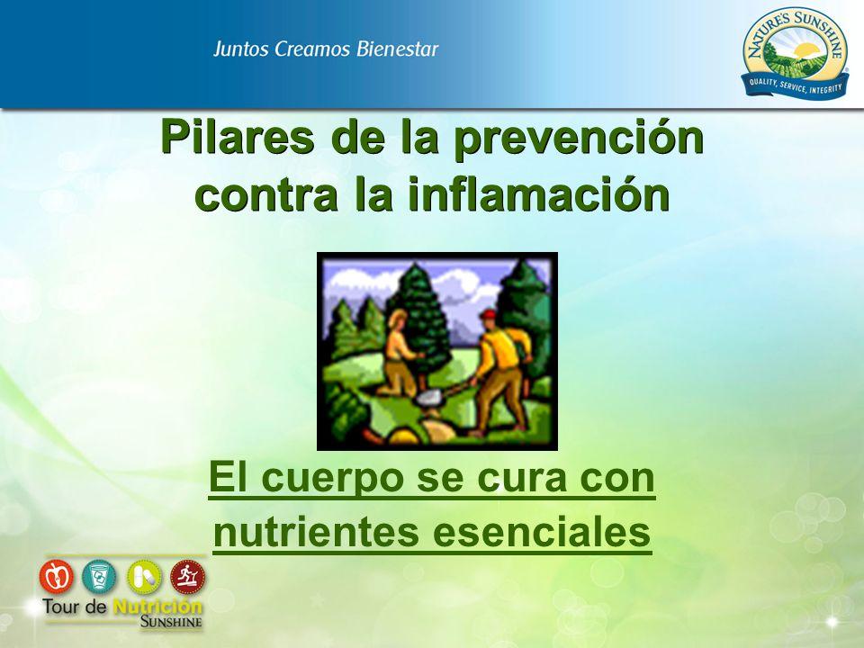 Pilares de la prevención contra la inflamación