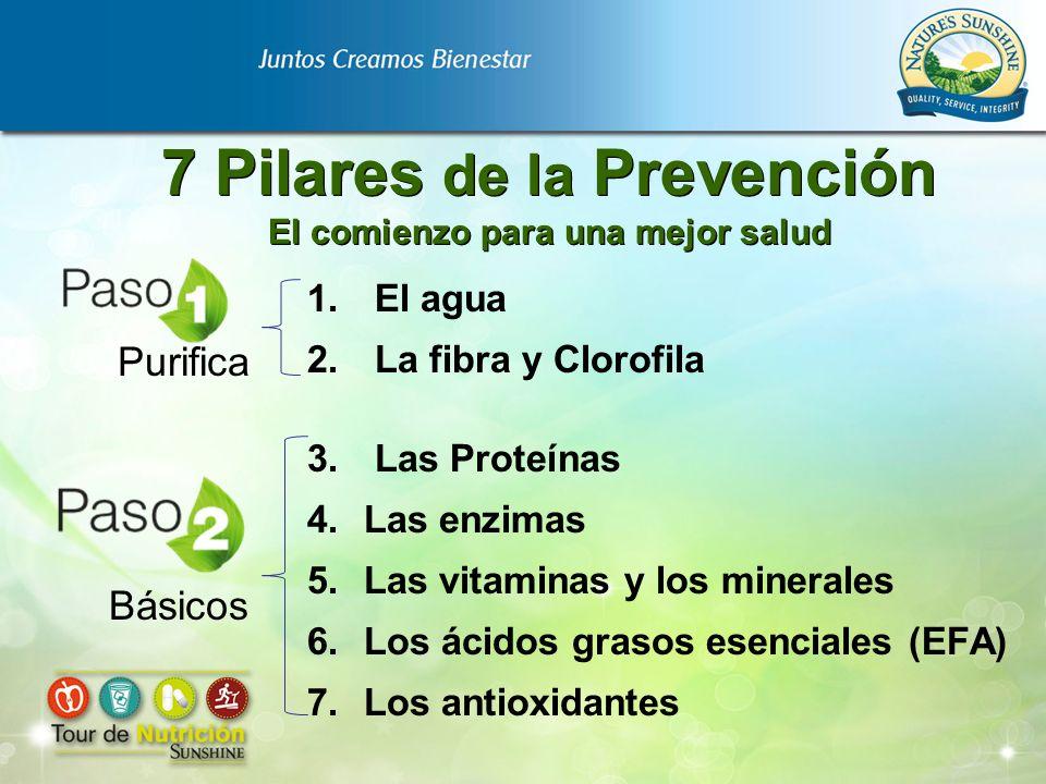 7 Pilares de la Prevención El comienzo para una mejor salud