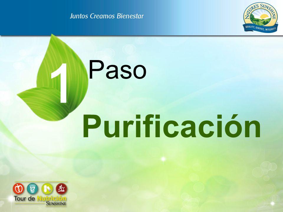 1 Paso Purificación