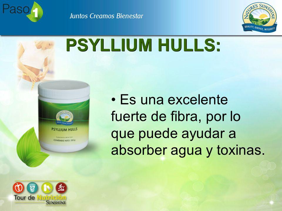 PSYLLIUM HULLS: Es una excelente fuerte de fibra, por lo que puede ayudar a absorber agua y toxinas.