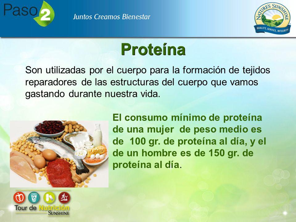 Proteína Son utilizadas por el cuerpo para la formación de tejidos reparadores de las estructuras del cuerpo que vamos gastando durante nuestra vida.