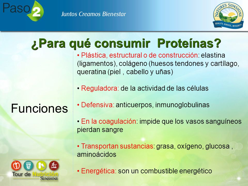 ¿Para qué consumir Proteínas