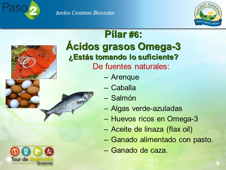 Pilar #6: Ácidos grasos Omega-3 ¿Estás tomando lo suficiente