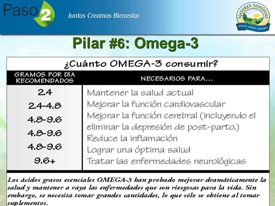 Pilar #6: Omega-3