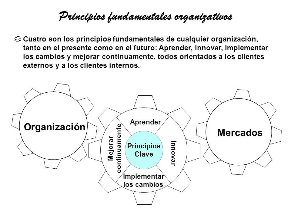 Principios fundamentales organizativos
