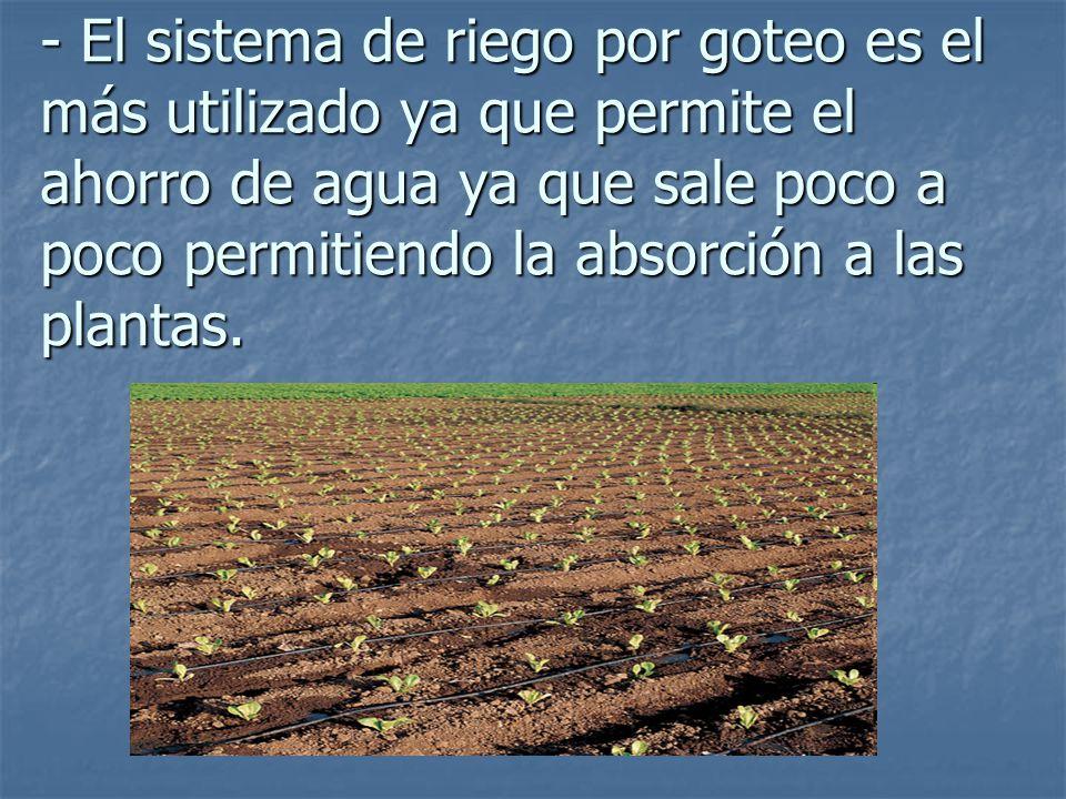2 la agricultura en espa a ppt descargar for Sistemas de ahorro de agua