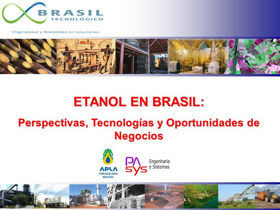 Perspectivas, Tecnologías y Oportunidades de Negocios