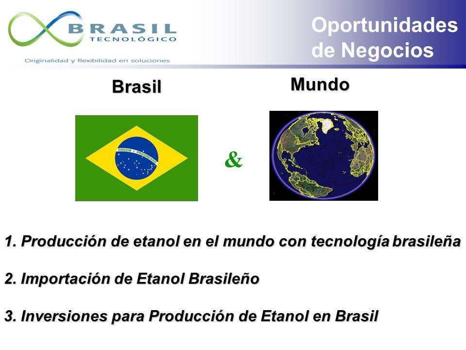& Oportunidades de Negocios Mundo Brasil