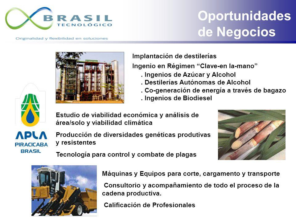 Oportunidades de Negocios Implantación de destilerías