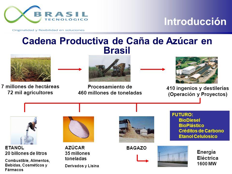 Cadena Productiva de Caña de Azúcar en Brasil
