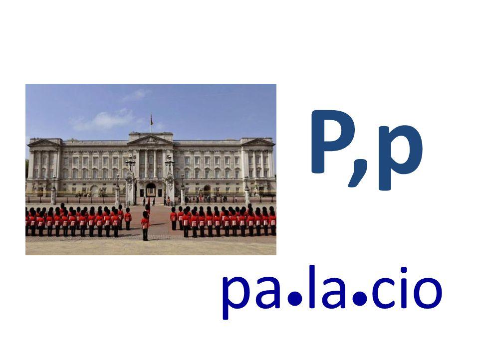 P,p pa●la●cio