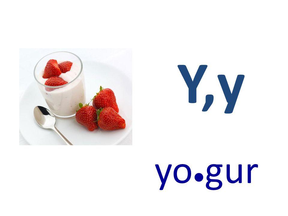 Y,y yo●gur