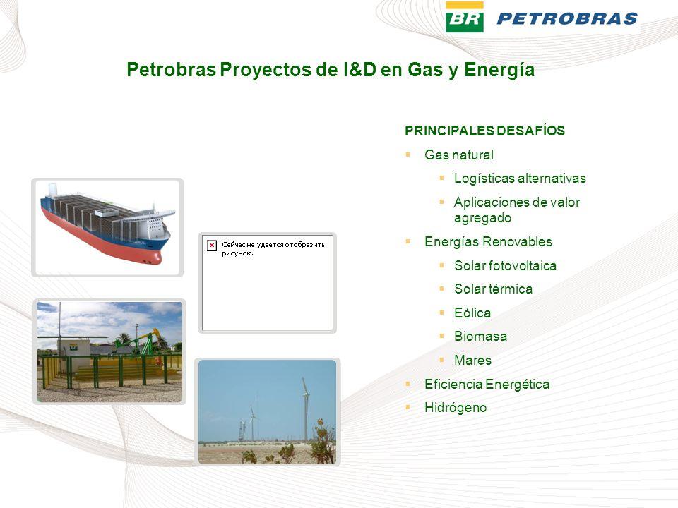 Petrobras Proyectos de I&D en Gas y Energía