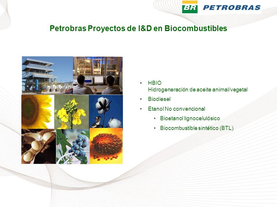 Petrobras Proyectos de I&D en Biocombustibles