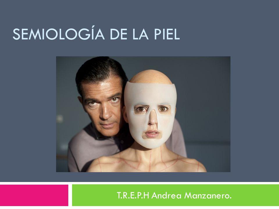 T.R.E.P.H Andrea Manzanero.