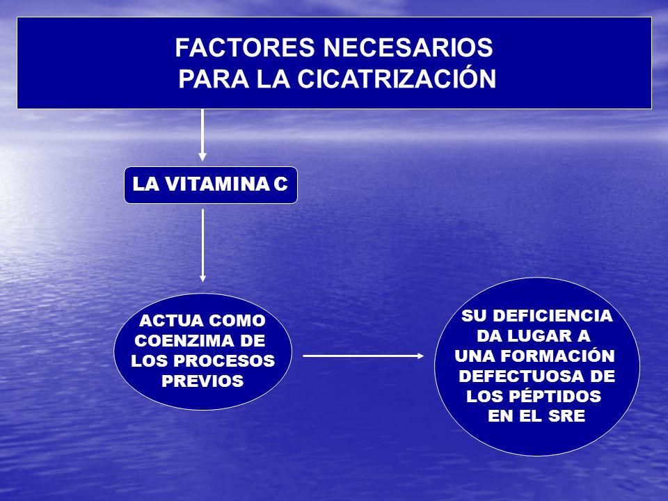 FACTORES NECESARIOS PARA LA CICATRIZACIÓN