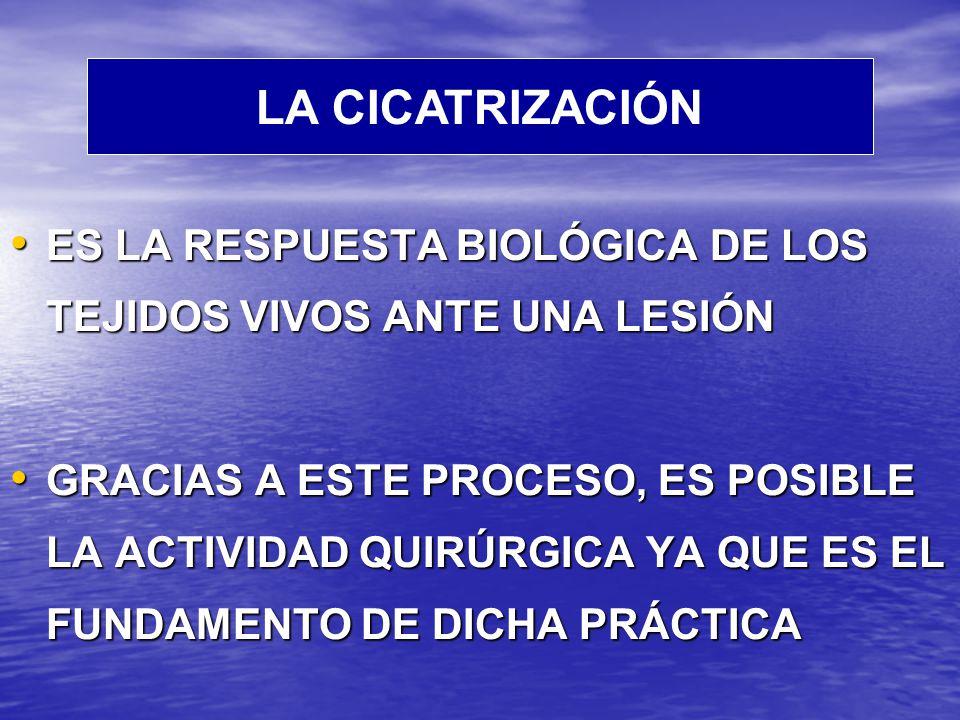 LA CICATRIZACIÓN ES LA RESPUESTA BIOLÓGICA DE LOS TEJIDOS VIVOS ANTE UNA LESIÓN.