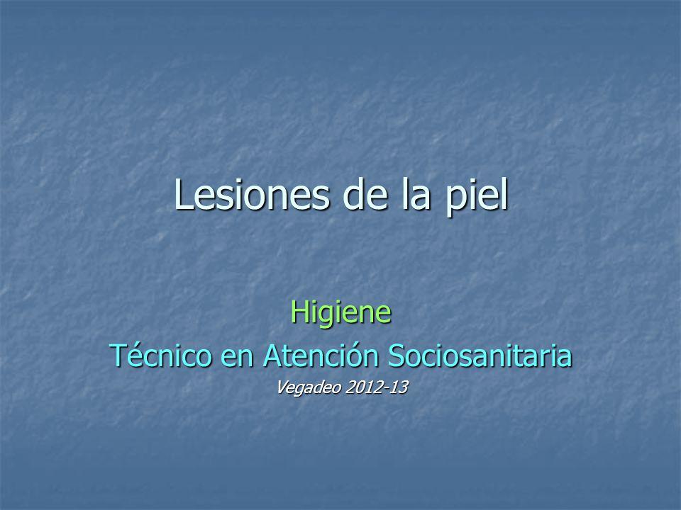 Higiene Técnico en Atención Sociosanitaria Vegadeo 2012-13
